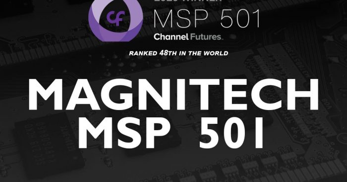 Magnitech Ranks #48 in the World on the MSP 501